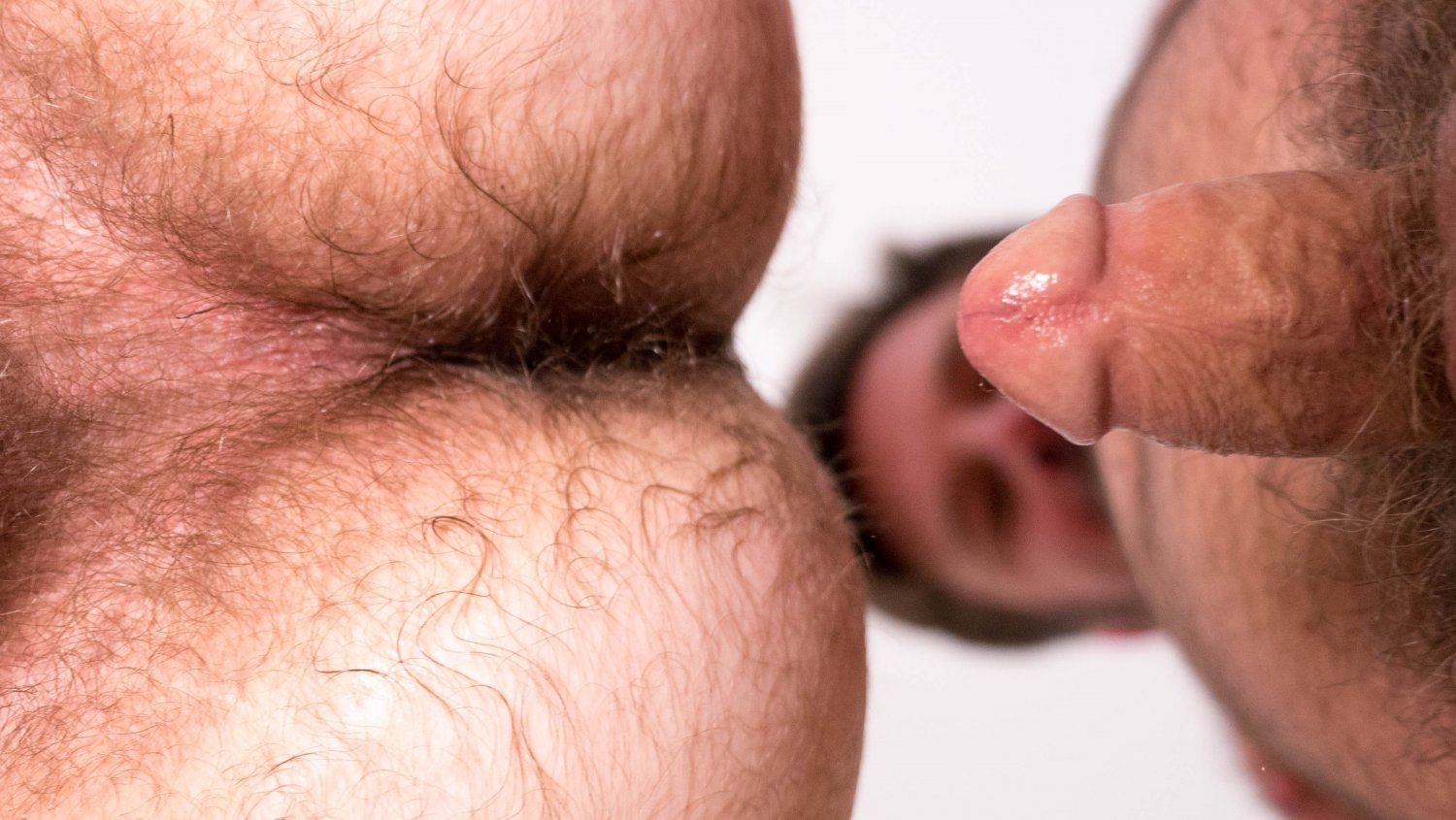 Hairy and Raw Gay Bear Sex Colt Cox and Chris Mine