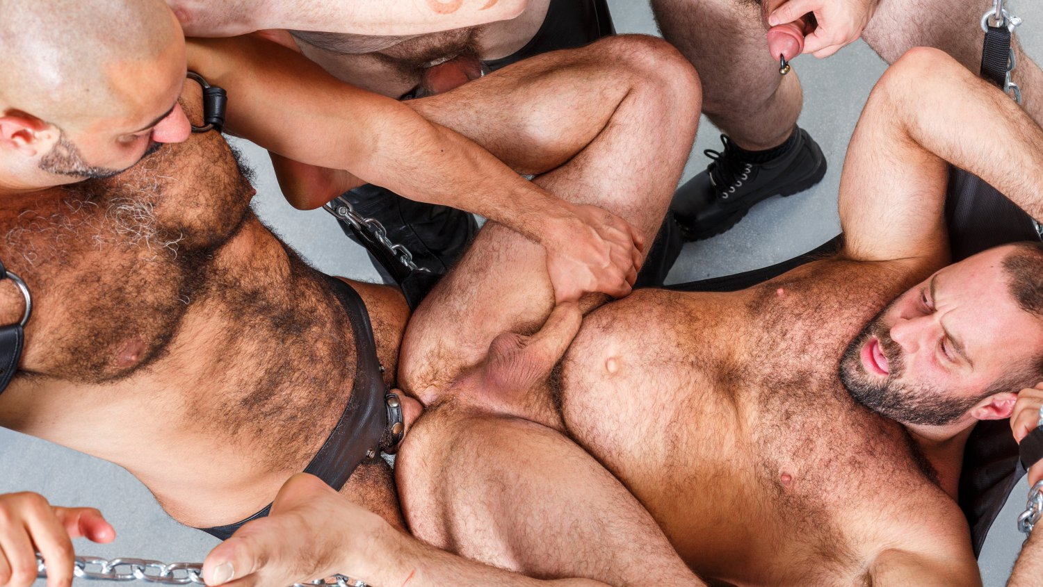Hairy and Raw Gay Bear Sex Sling Gang Bang Part 1